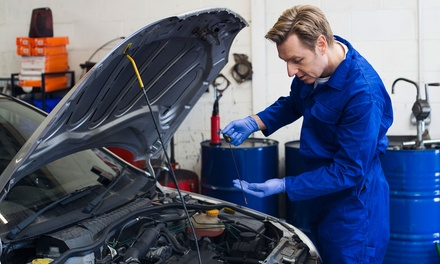 Full Vehicle Service ($99) + WOF + $100 Voucher to Spend on Labour on Repairs ($169) at Expert Automotive (Up to $349)