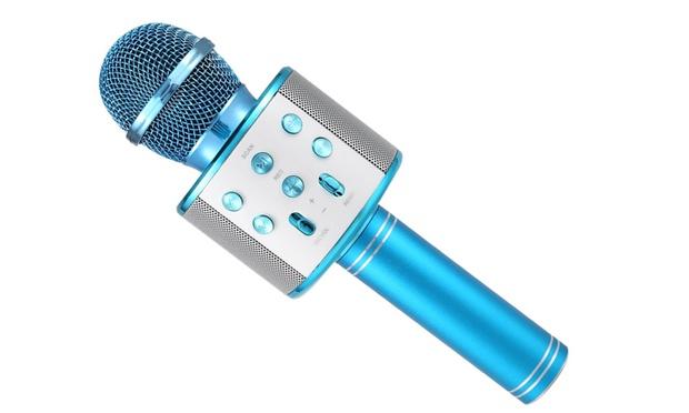 Portable Wireless Karaoke Microphone: One ($19.95) or Two ($34.95)